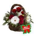 Gerberas & Roses Holidays, -Mexico