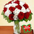 Holiday Gift Center - Flores a Tuxtla Gutierrez-Chiapas