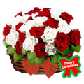 Holiday Roses, -Rep. Dominicana