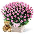 Felicidad de Rosas