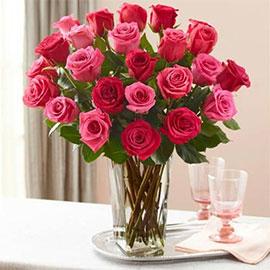Rosas Premium en Jarrón