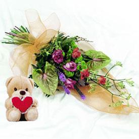 Wildest Love <b>Peluche Gratis</b>