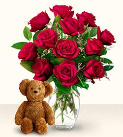 Roses & Teddy SALE!, Brazil, Rn - Rio Grande Do Norte
