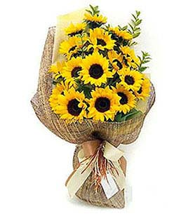 Sunflowers Bouquet, Brazil, Al - Alagoas