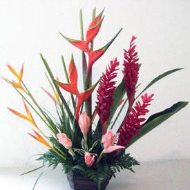 Envia Flores Para Agradecimiento A Estado Mixco Flores