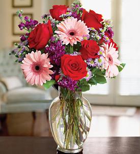 Envia Gerberas A Antigua Guatemala Flores Antigua