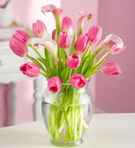 Envia Tulipanes A Antigua Guatemala Flores Antigua