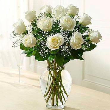 12 o 18 Rosas <B><BR>JARRON GRATIS</B>