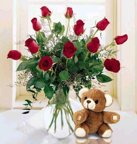 Premium Roses & Teddy