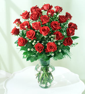 Dreamed Roses, Nicaragua, Nueva Segovia