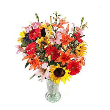 Florerias En Antofagasta Flores A Antofagasta Hello My Love