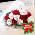 Christmas Eve Roses, -Argentina