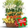 Holiday Fruits, -Argentina