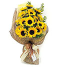 Sunflowers Bouquet, Brazil, Sc - Santa Catarina