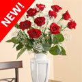 Guatemala Premium Roses™, -Guatemala