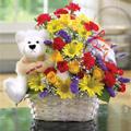 Premium Florist Sweet Basket ®, Panama, Changuinola