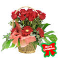 Christmas Red Basket, -Mexico