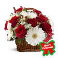 Christmas Colors Basket, -Panama