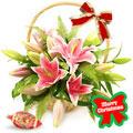 Lilies for Christmas, -España