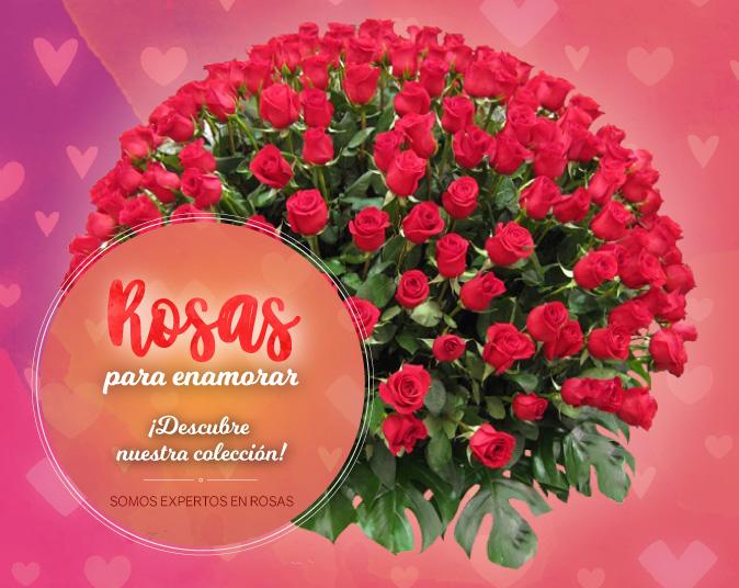 Somos expertos en envio de rosas