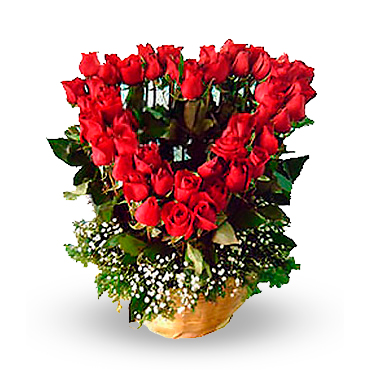 Amor en Rosas<br><b>OFERTA!</b>