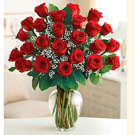 Magnificent Roses<br><b> OFERTA!</b>