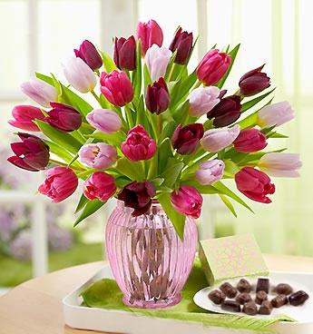 Charmed Tulips <b>OFERTA!</b>