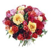Rosas Premium Bouquet, Uruguay, Soriano