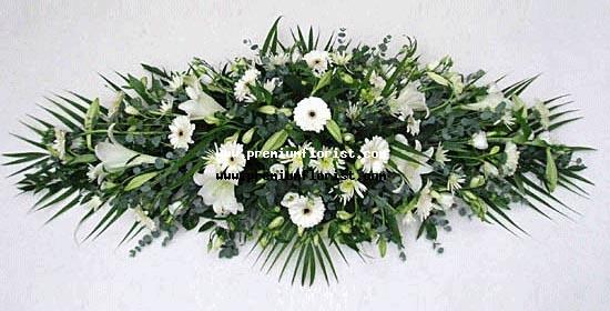 Paz y Condolencias
