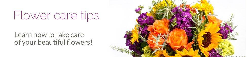 Flowers care