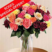 Blooming Love OFFER!, USA, Texas